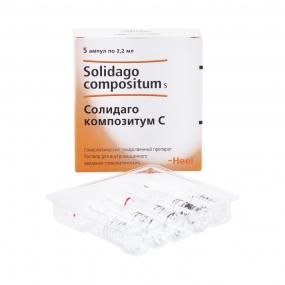 Солидаго